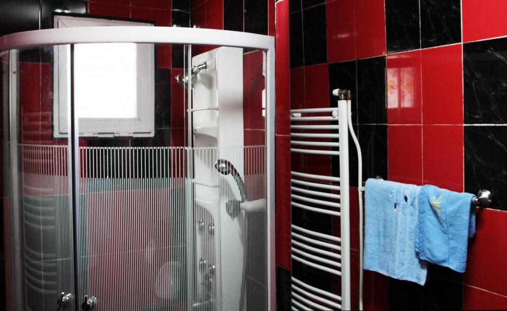Regim Hotelier Iasi - Apartament 1 camera - Single 10